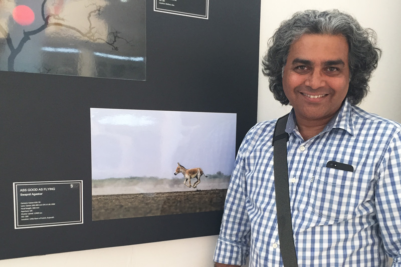 DCP Wildlife Photography Exhibition - Indian Wild Ass