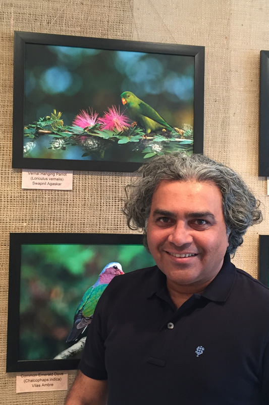 Vernal Hanging Parrot, displayed at NEST Photography competition