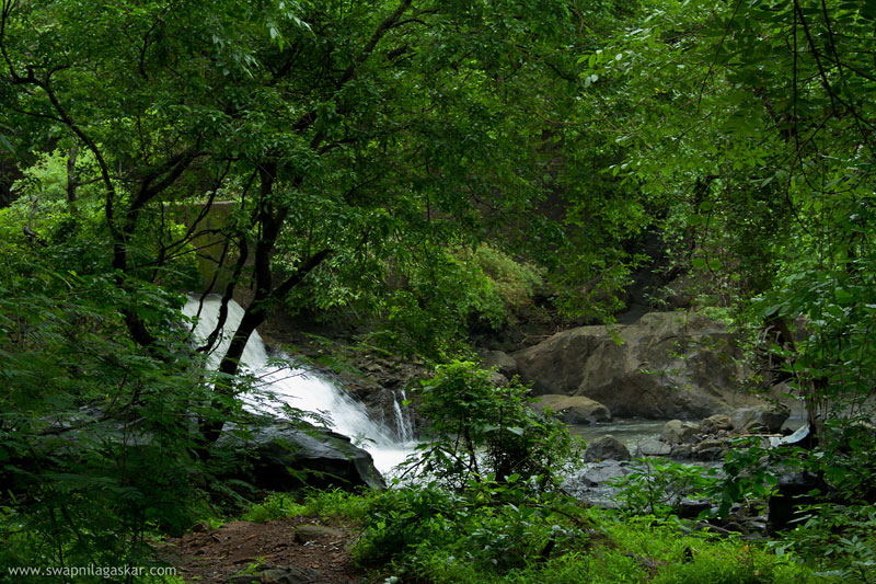 A Waterfall in Borivali National Park