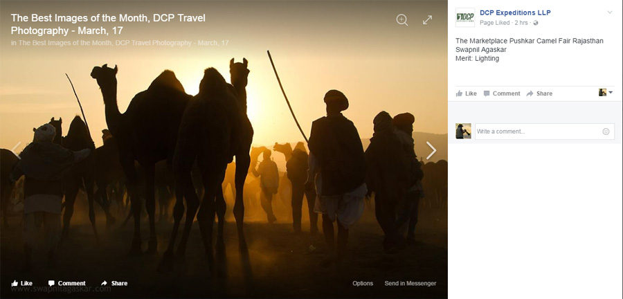 Best of the month - DCP Travel