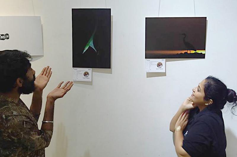DCP Wildlife Photography Exhibition, New Delhi - 2017